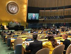 75 AGNU - H.S.H. the Sovereign Prince at the 74th session of the UN General Assembly