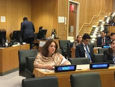 ONU 2017 - H.E. Ms Isabelle Picco, Ambassador and Permanent Representative of the Principality of Monaco to the United Nations © DR